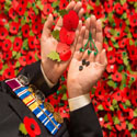bingo boosts poppy appeal